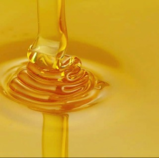 Honey and Wax Processing