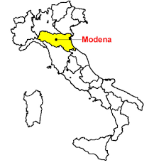 The context  - What we know about the tourists visiting Modena