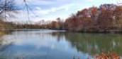 Field Trip - Wilson Lake - May 8th