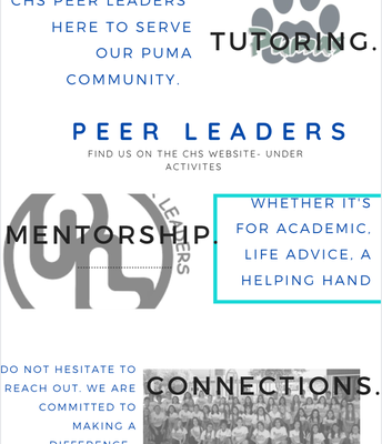 Tutoring Available From Peer Leaders!