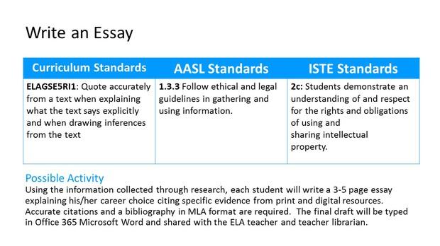 career choice essay example