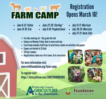 Farm Camp 2020