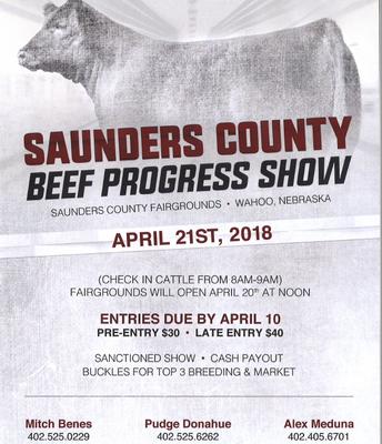 Saunders County Beef Progress Show
