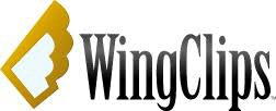 Wing Clips