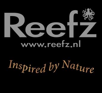 Reefz Sessies