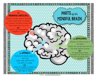 Teach About the Brain
