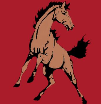 Noonan Mustangs