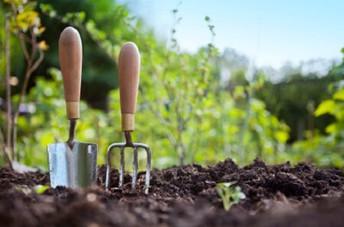 Giving Garden Info: