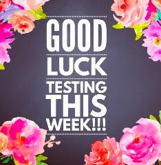 Good Luck on Testing!