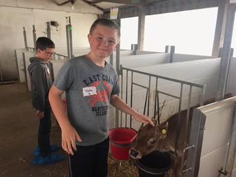 Third-Grade Visits the Iowa Dairy Center