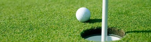 Golf ball on grass next to hole