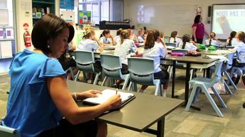 Peer Classroom Visits