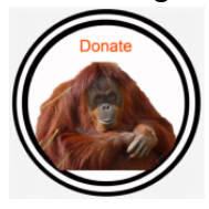 Change for Change for Orangutans