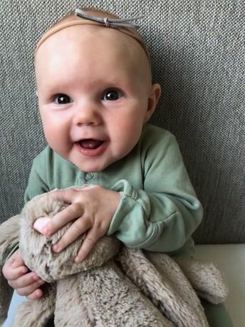 Baby Cambree