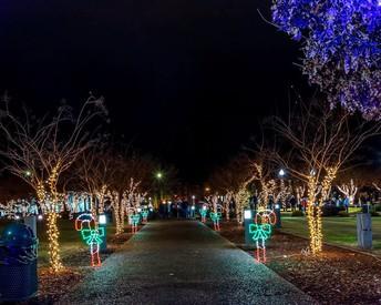 Wilson Park Festival of Lights:  6:30 pm
