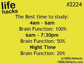 When should I study?