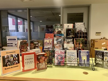 Diversifying our Libraries