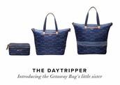 The Daytripper