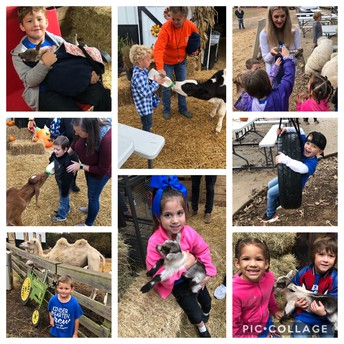 Kinder heads to the Farm!