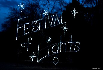 Virtual Festival of Lights and Sing-Along