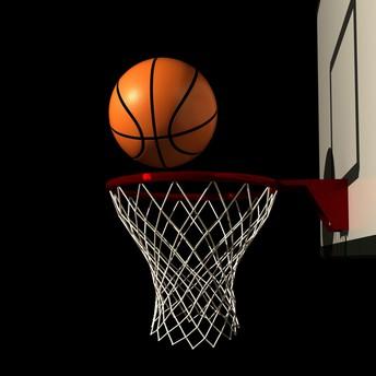 Liberty Basketball Camp