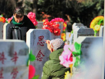 Happy Spring -  The Qingming Festival