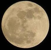 Some SUPER Facts about the November 14th SUPER Moon from TMS's SUPER Science Department!