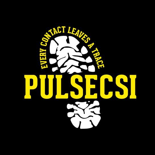 PULSE CSI profile pic