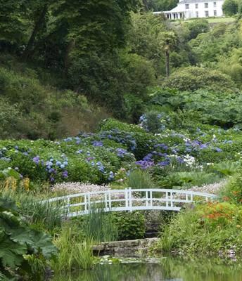 En underbar trädgård