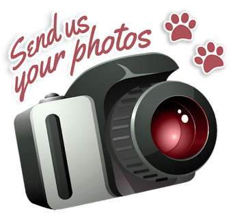 Send us your pictures!