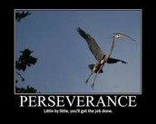 How to Persevere