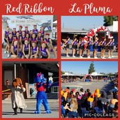 La Pluma Red Ribbon Assembly