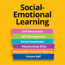 Did you miss our SEL Webinar?