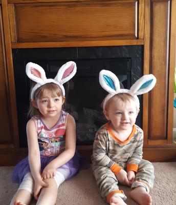 Calary bunnies