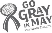 Tuesday:  Go Gray in May for Brain Tumor Awareness