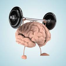 Who is using the library, aka The Brain Gym?
