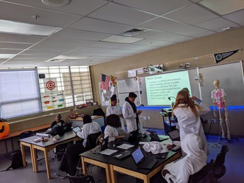 Biomedical Sciences students in Anatomy and Physiology