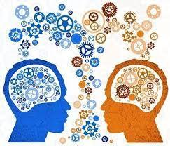 What is Social Awareness?