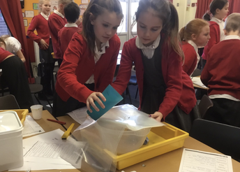 They're Science Mad in Year 5!