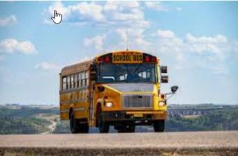 Transportation Services Update