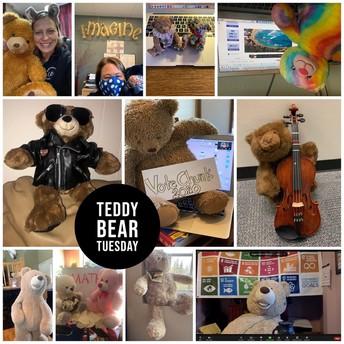 Teddy Tuesday