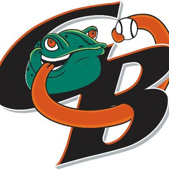 Green Bay Bullfrogs Reading Incentive