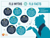 Flu Myths vs. Flu Facts