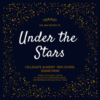 Under the Stars Prom Night