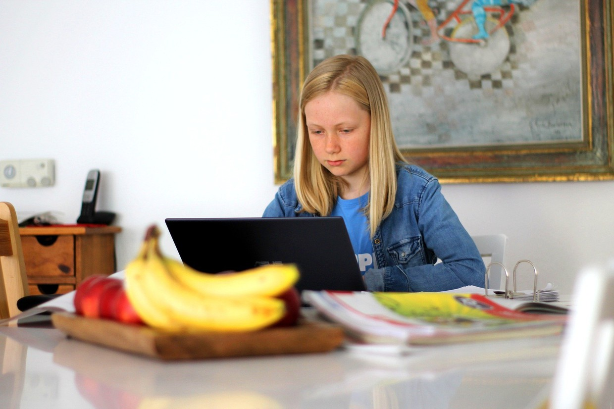 Young female student doing virtual school work