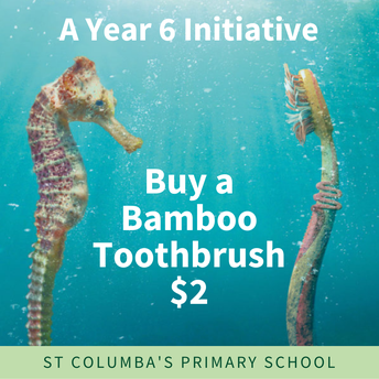 Buy your bamboo toothbrush!