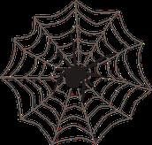 Spider Web Bridges