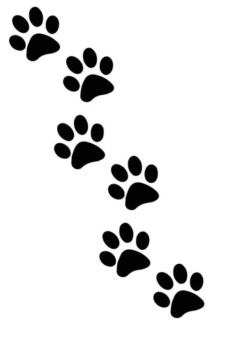 The Paw Print Staff