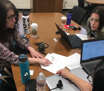 Mentors analyze formative assessment data