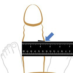 Step 3: Measure Girth